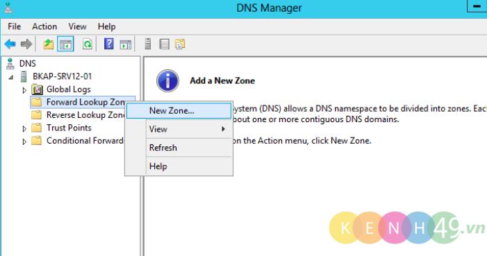 Cấu hình DNS Server