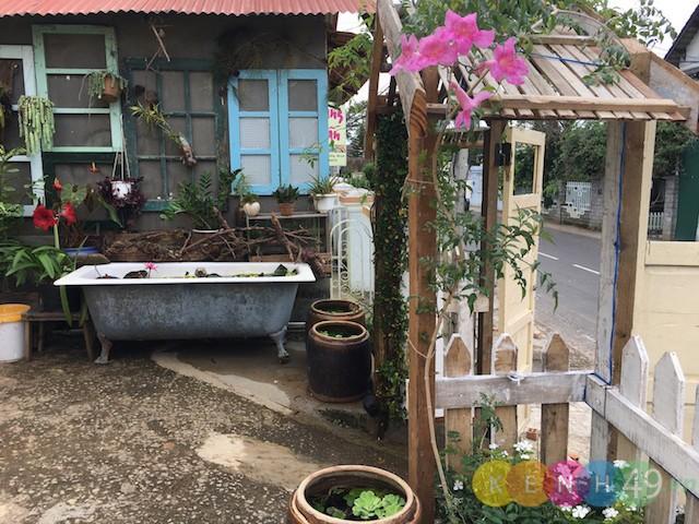 Hostel, homestay đẹp Đà Lạt