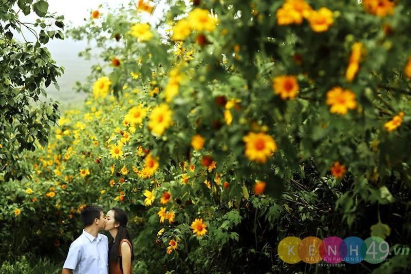Chụp ảnh ngoại cảnh đẹp ở Đà Lạt