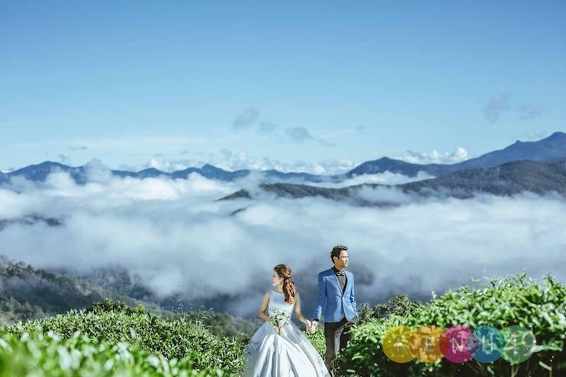 Địa điểm chụp ảnh cưới Đồi Chè Cầu Đất