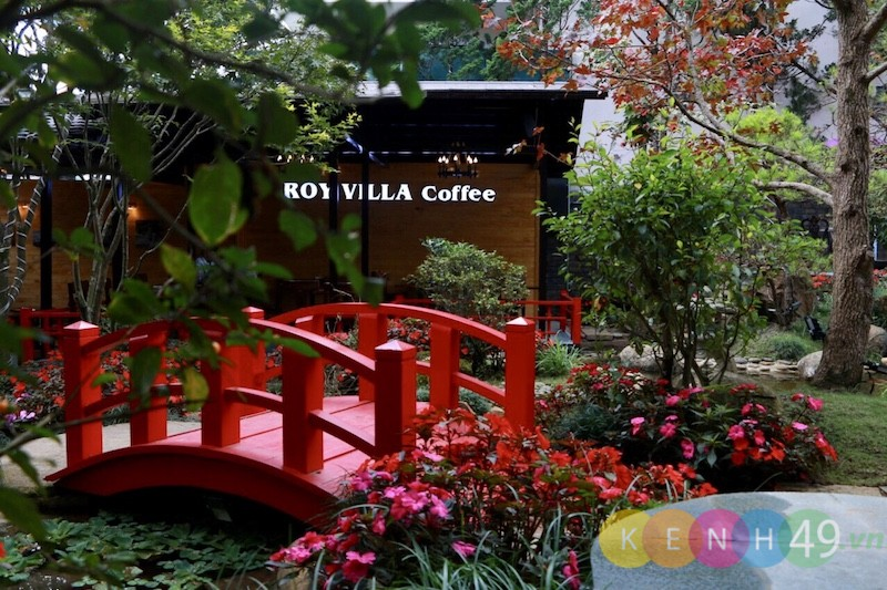 Roy Villa - Coffee
